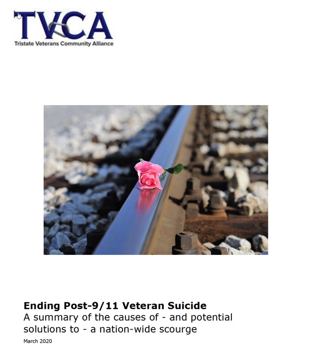 Post-9/11 Veteran Suicide White Paper